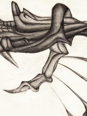Kralle Illustration