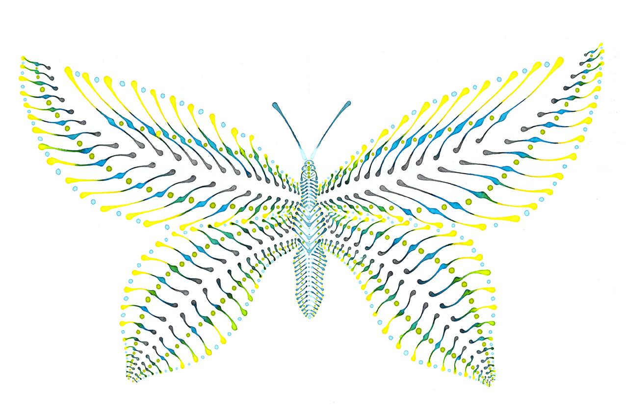 Schmetterling Illustration Dotting
