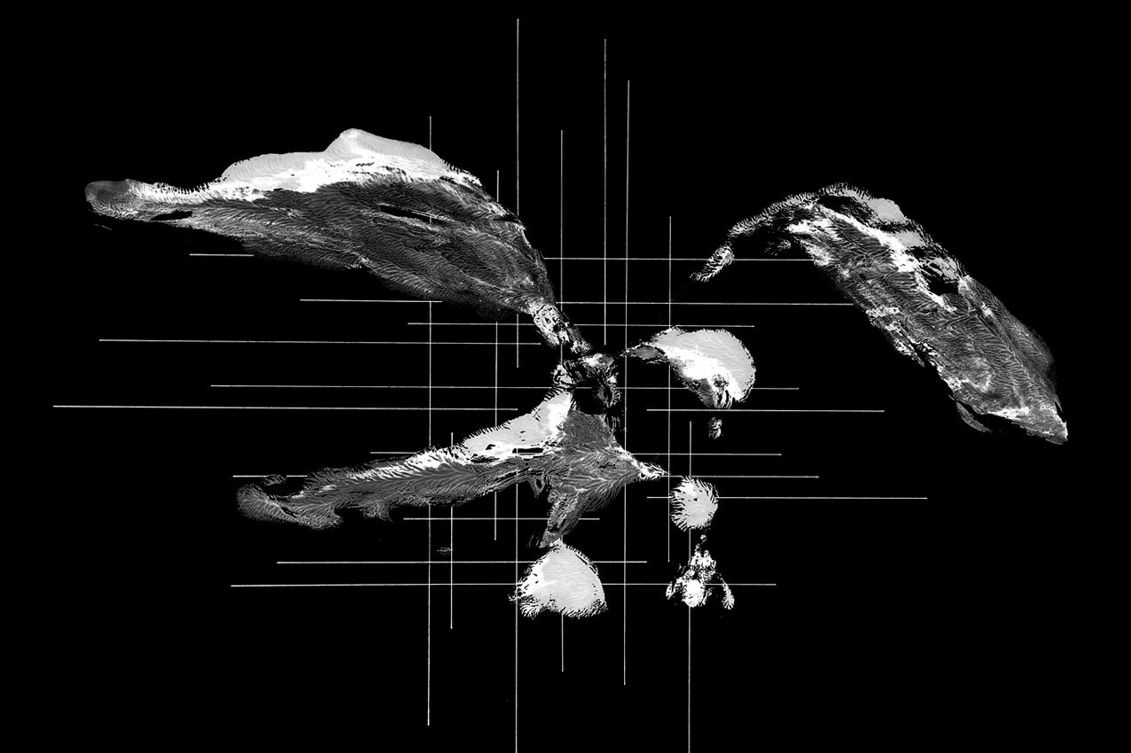 Abstrakter Vogel