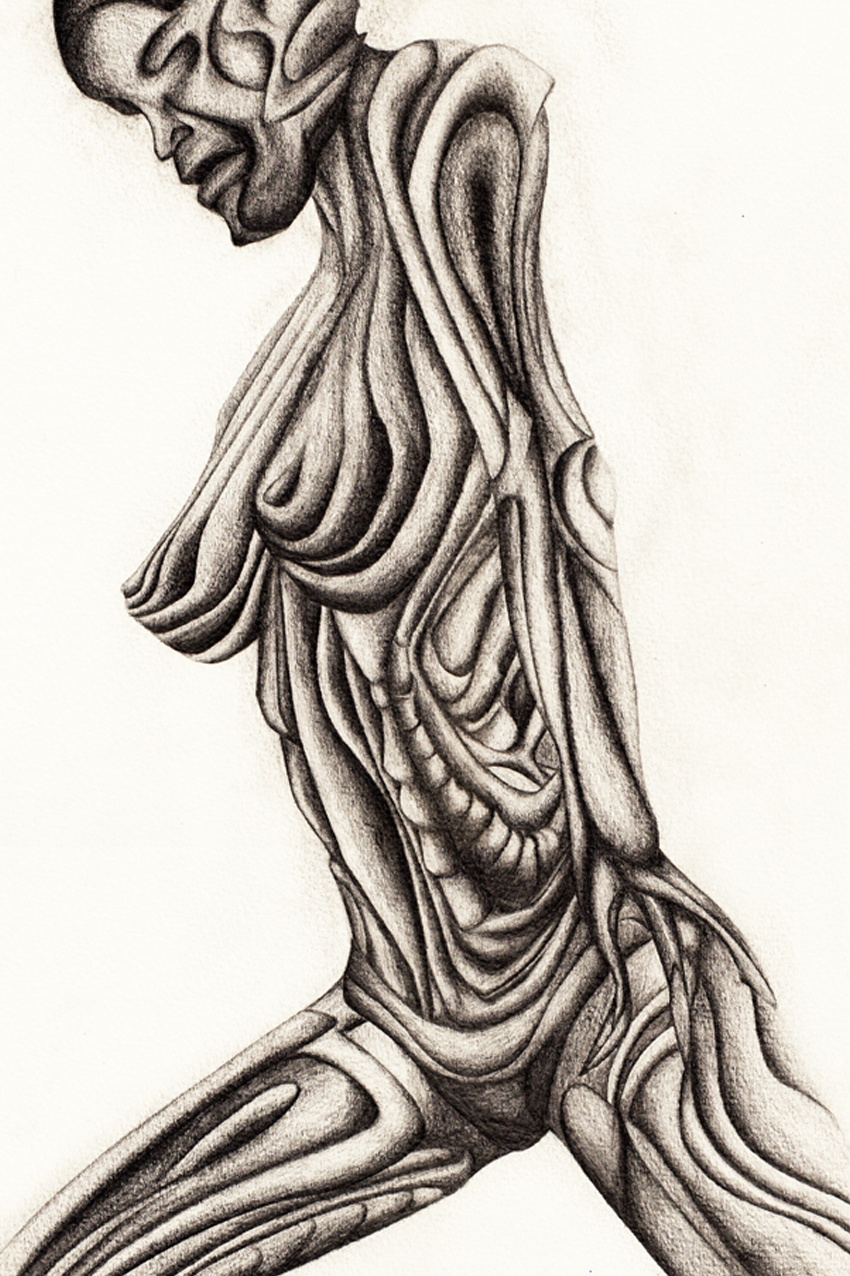 Female Body Weiblicher Körper Illustration
