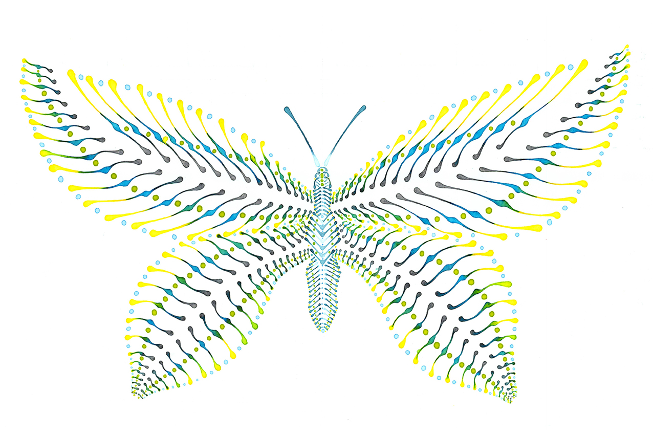 Schmetterling Illustration Dotting