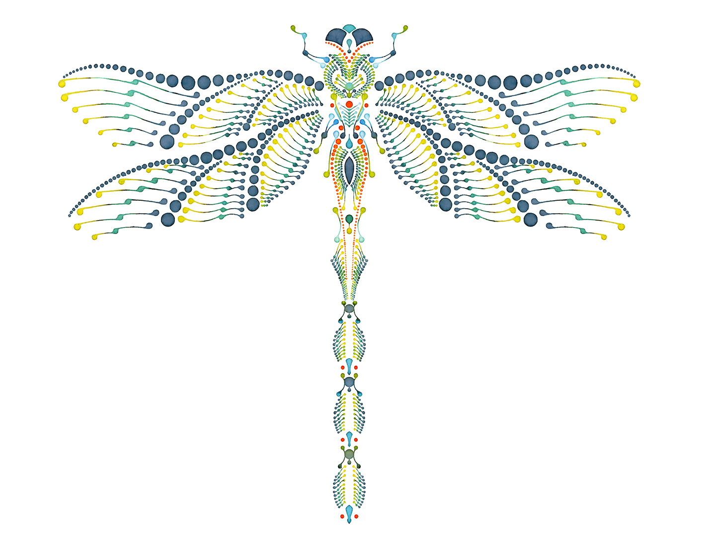 Illustration - DRAGONFLY V1 – Dotting – watercolour on paper – 56 x 42 cm