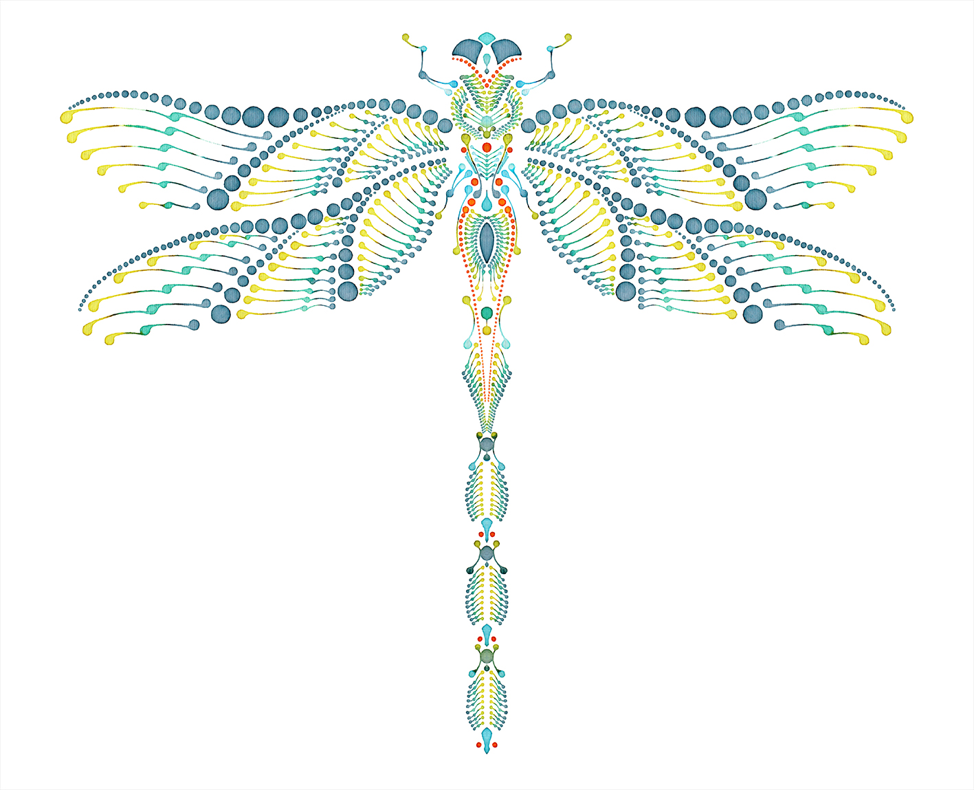 dragonfly_watercolour_farbtunnel_72