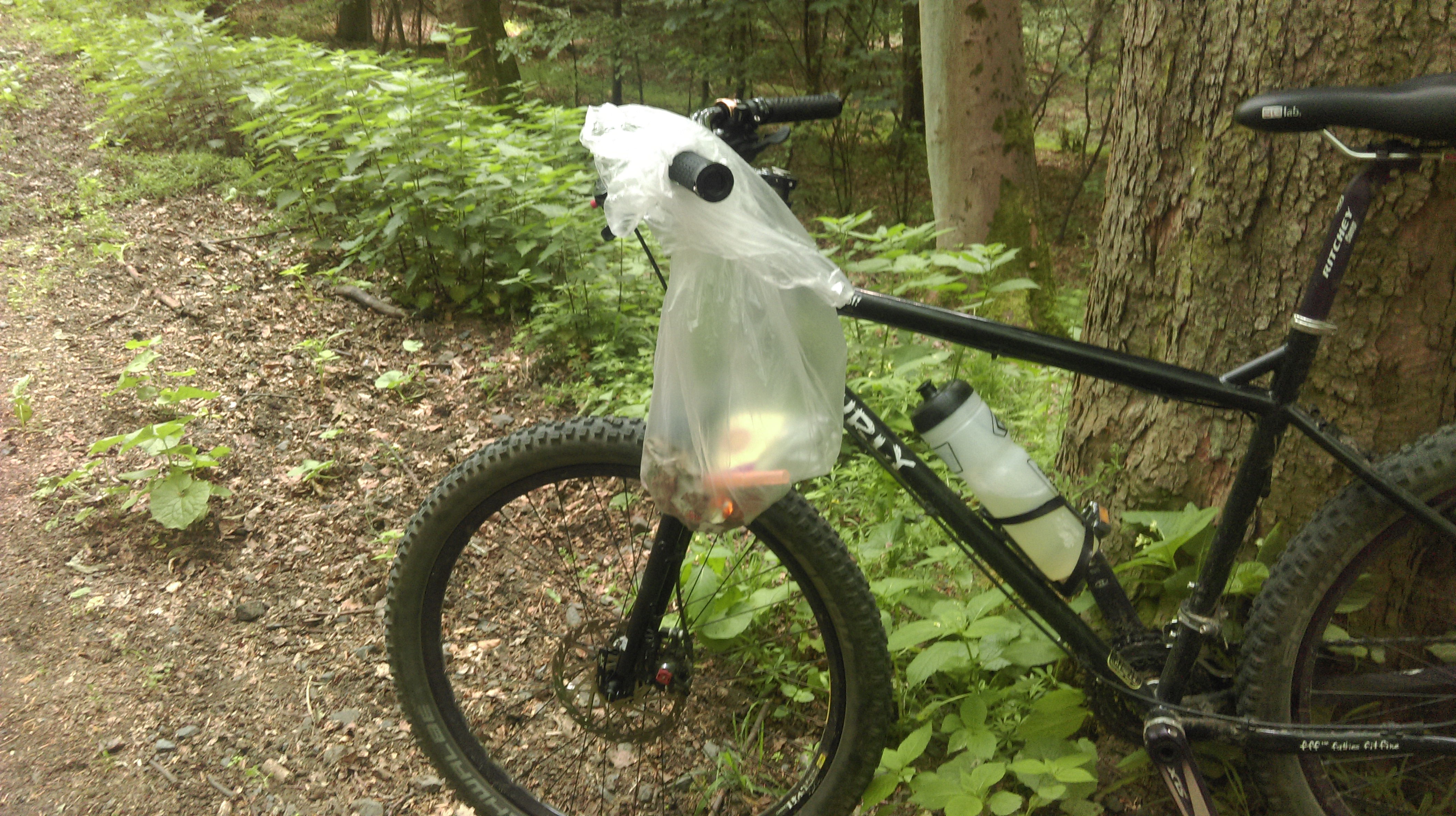 Müll sammeln im Wald