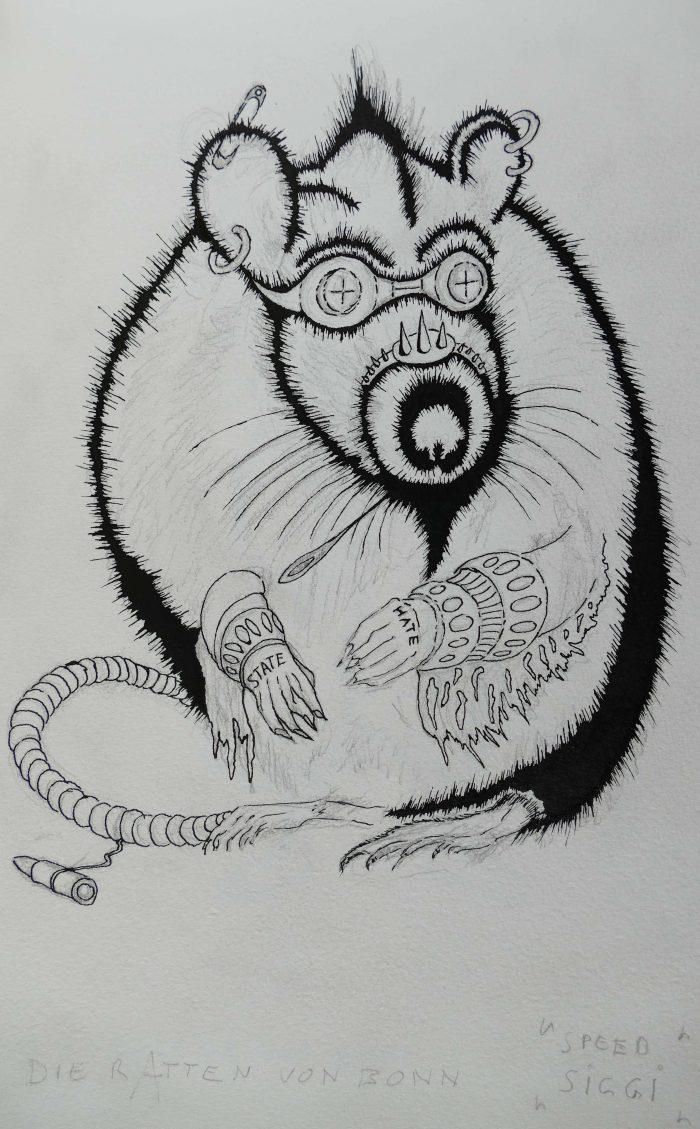 Ratten in Bonn
