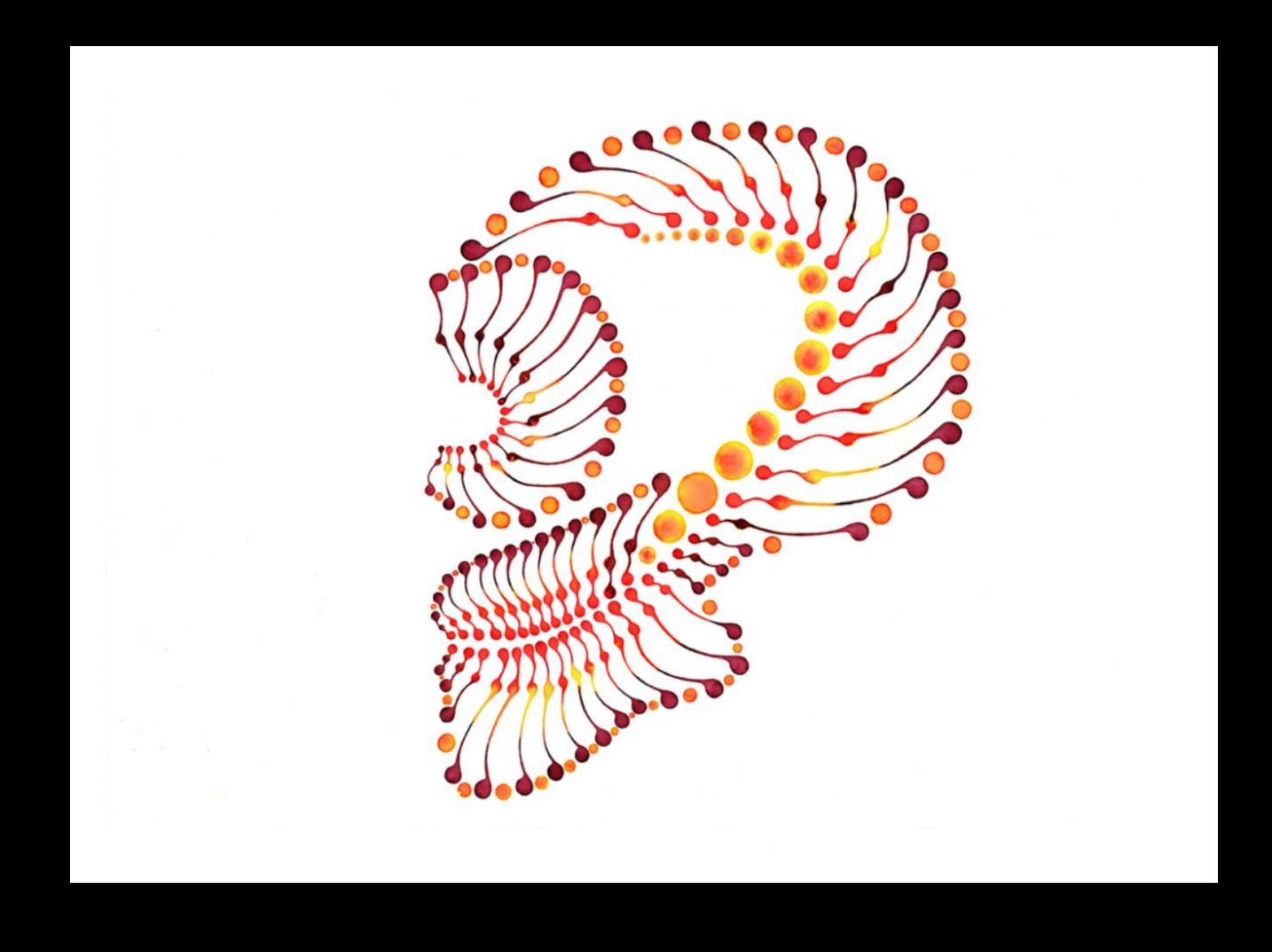 Dotting Art Skull