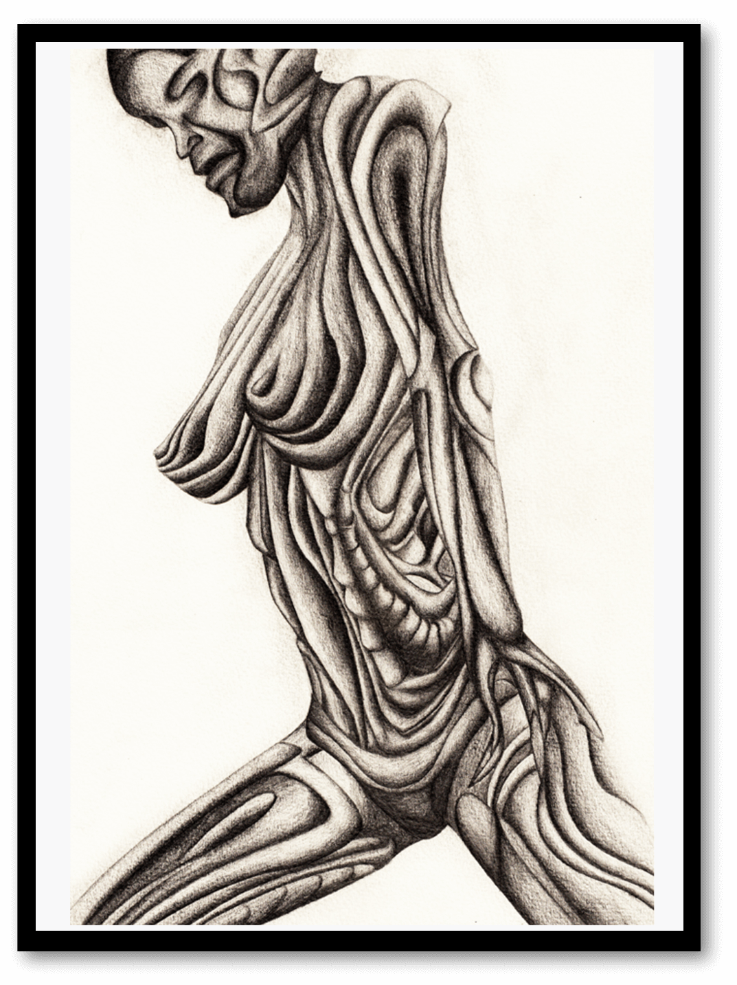 Abstract Body Drawing